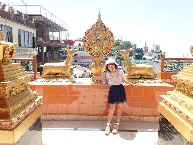 ダラムサラ チベット寺